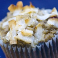 Primal Coconut Blueberry Muffins