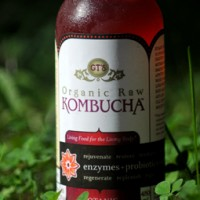 Kombucha – What's Up With This Stuff?