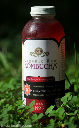 Kombucha in my yard