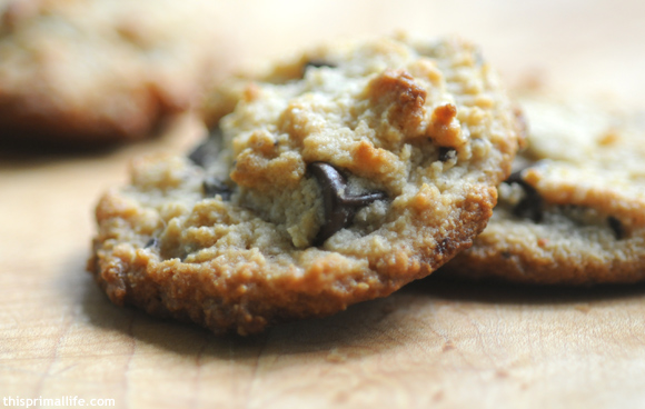 Primal Chocolate Chip Cookie