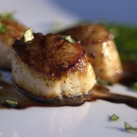 Carmelized Scallops with Balsamic Reduction Sauce Recipe